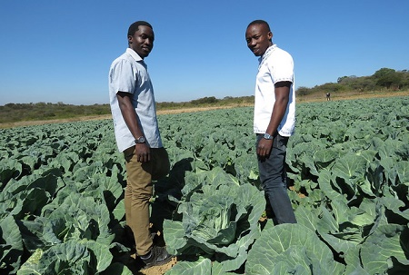 The Future of Africa`s Food Security