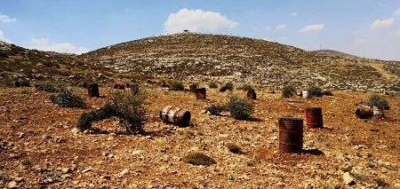 Israel Destroys >2K of Palestine's Trees since May