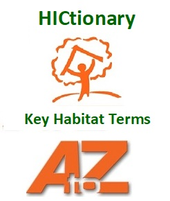 HICtionary Newly Updated